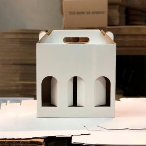 Caja botella x3 1